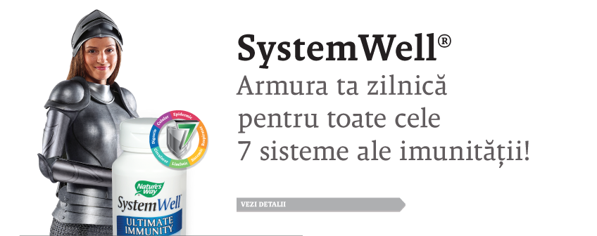 systemwell
