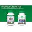 Protocol Hepatox