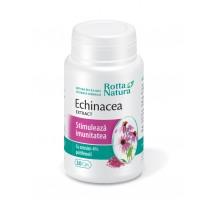 Echinacea Extract 30 cps, Rotta Natura