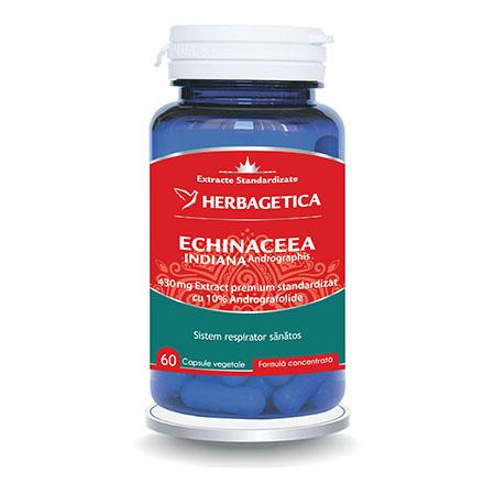 Echinaceea Indiana 60cps, Herbagetica