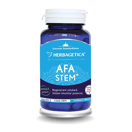 AFA Stem 60 cps, Herbagetica
