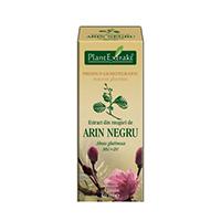 Extract din muguri de arin negru 50ml, Plantextrakt
