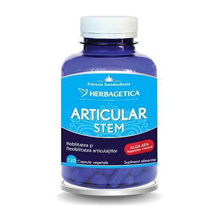 Articular Stem 120 cps, Herbagetica