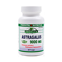 Astragalus 9000 mg 60 cps