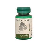 Astragalus 60 cpr