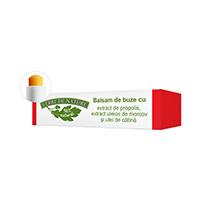 Balsam de buze cu extract de propolis, extract uleios de morcov si ulei de catina 4.8g, Manicos
