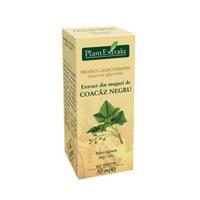 Extract din muguri de coacaz negru 50ml, Plantextrakt