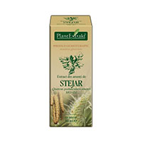 Extract din amenti de Stejar 50ml