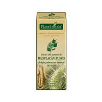Extract din amenti de mesteacan pufos 50ml, Plantextrakt