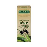 Extract din mladite de maslin 50ml, Plantextrakt