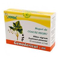 Muguri de coacaz negru - Gemoderivat 30 monodoze, Hofigal