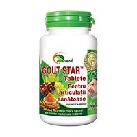 Gout Star 100 tbl, Ayurmed