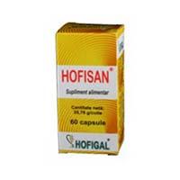 Hofisan 60 cps, Hofigal