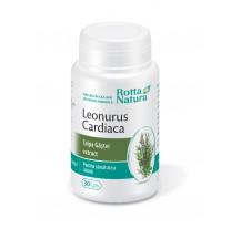 Leonurus Cardiaca 30 cps, Rotta Natura