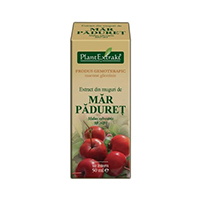 Extract din muguri de mar paduret 50ml, Plantextrakt