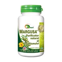 Margusa 100 tb, Ayurmed