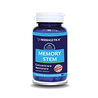 Memory Stem 60 cps