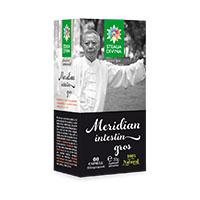 Meridian Plaman 60 cps