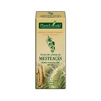 Extract din seminte de mesteacan 50ml, Plantextrakt