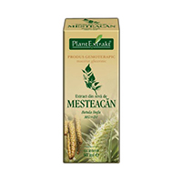 Extract din seva de mesteacan 50ml