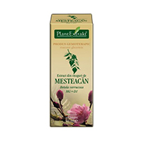 Extract din muguri de mesteacan 50ml