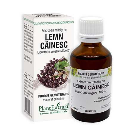 Extract din mladite de Lemn Cainesc 50ml, Plantextrakt