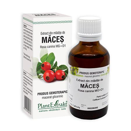 Extract din mladite de Maces 50ml, Plantextrakt