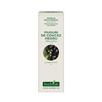 Extract concentrat din muguri de coacaz negru 15ml, Plantextrakt