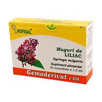 Muguri de liliac - Gemoderivat 30 monodoze, Hofigal