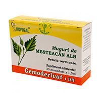 Muguri de mesteacan alb - Gemoderivat 30 monodoze, Hofigal