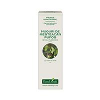 Extract concentrat din muguri de mesteacan pufos 15ml, Plantextrakt