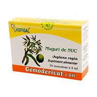 Muguri de nuc - Gemoderivat 30 monodoze, Hofigal