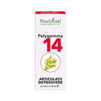 Polygemma 14 - Articulatii detoxifiere 50ml, Plantextrakt