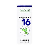 Polygemma 16 - Plamani 50ml, Plantextrakt