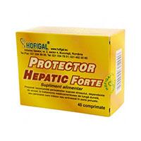 Protector hepatic forte 40 cpr, Hofigal