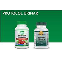 Protocol Urinar