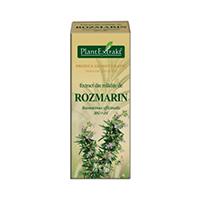 Extract din mladite de rozmarin 50ml, Plantextrakt