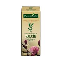 Extract din muguri de salcie 50 ml
