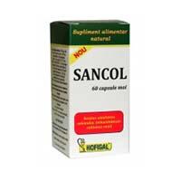 Sancol 60 cps, Hofigal