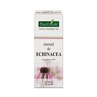 Tinctura de echinacea 50ml, Pantextrakt