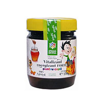 Vitalizant Energizant Forte Pentru Copii 270g, Santo Raphael