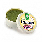 Crema Echinaceea 20g, Santo Raphael
